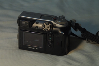 P5280039.JPG